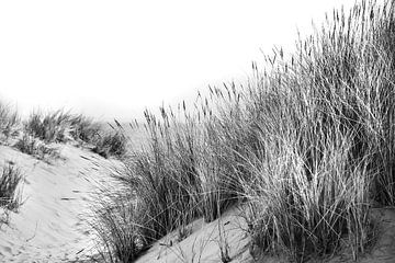 Duinen met helmgras en uitzicht op zee in zwart-wit van Anouschka Hendriks
