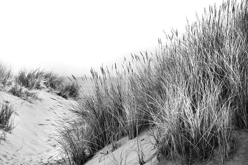 Dunes avec oyats et vue sur la mer en noir et blanc sur Anouschka Hendriks