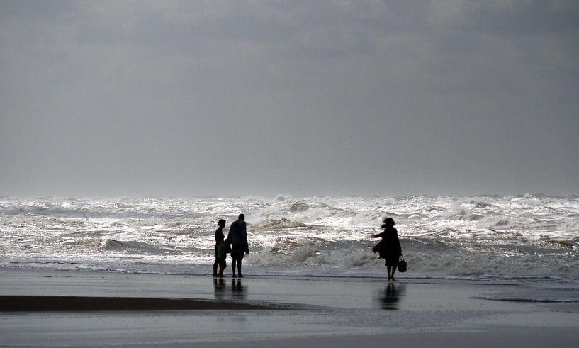 Wind en golven van Hans Heemsbergen
