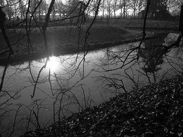 Sonnenlicht auf dem Wasser von Rex Quintyn