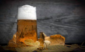 Herfst biertje van Fotografie Egmond