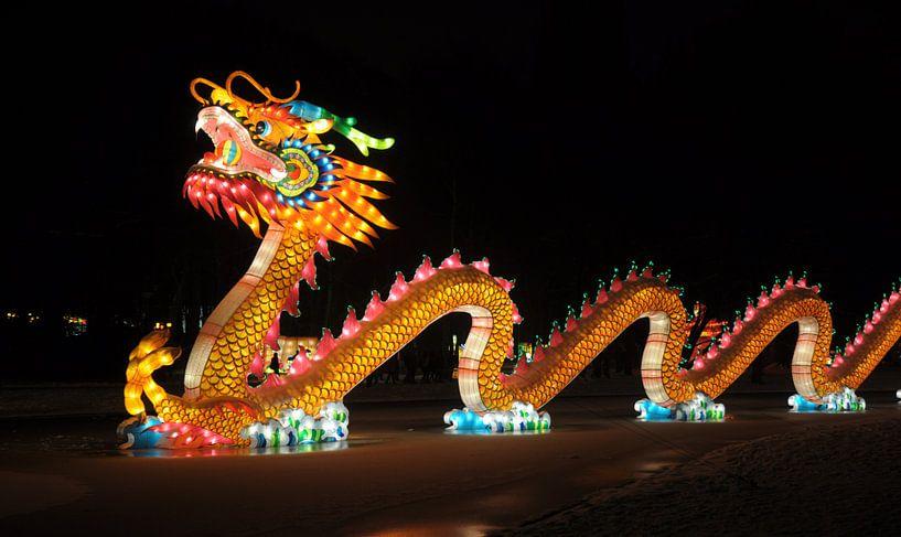 Chinese draak van Rogier Vermeulen