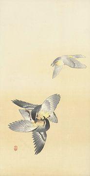 Twee vechtende vogels van Ohara Koson