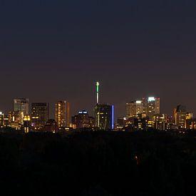 Skyline Rotterdam von Nico Dam