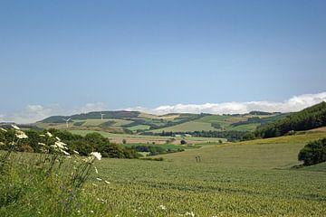 Scotland  landscape van Babetts Bildergalerie