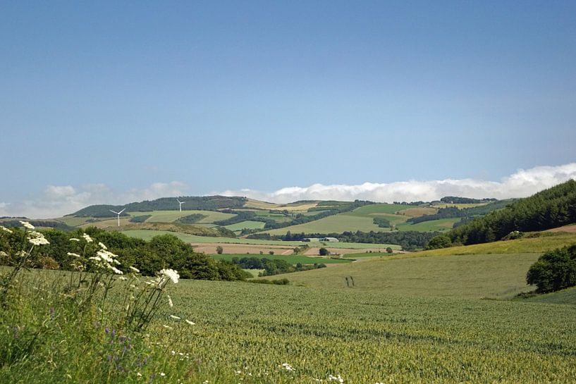 Paysage de l'Écosse sur Babetts Bildergalerie