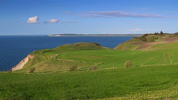 Landscape in Denmark
