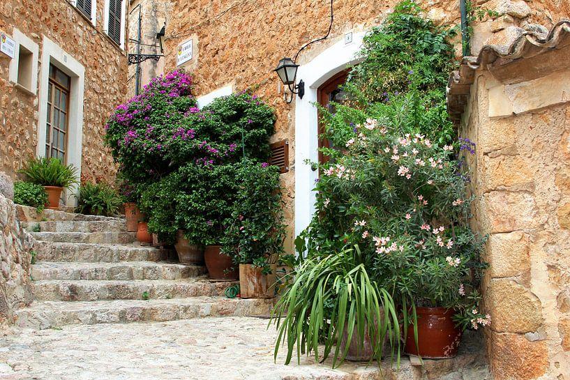 Rustiek dorpsgezicht, Mallorca van Inge Hogenbijl