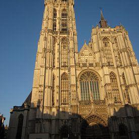 Antwerpen Kathedraal von Sander van der Lem