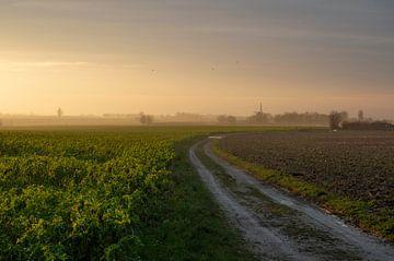 Het Plateau van Margraten van Evelien Heuts-Flachs