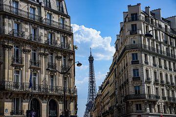 Parijs van Ingrid de Vos - Boom
