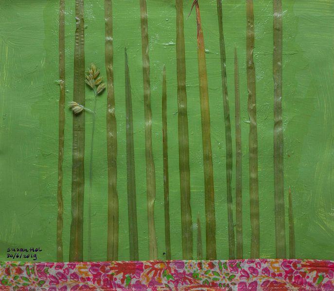 Grassen van Susan Hol