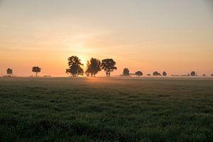Zonsopkomst, Sunrise van