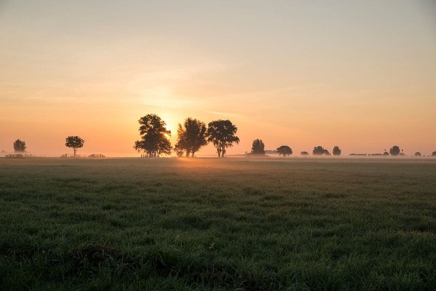 Zonsopkomst, Sunrise