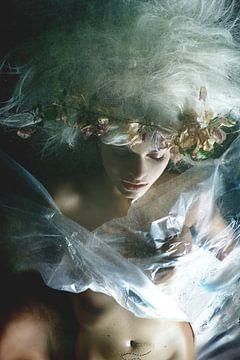 A Midsummer Night's Dream, Olga Mest van 1x