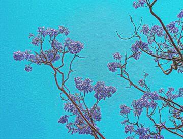 Paarse bloesem takken van de Jacaranda boom van Rietje Bulthuis