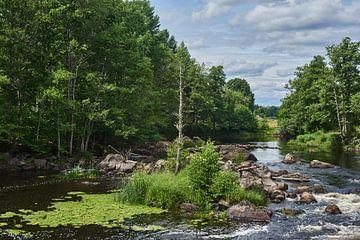Zweedse rivier 215 van Geertjan Plooijer
