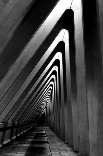 Architectuur - lijnenspel in zwart wit - hoog