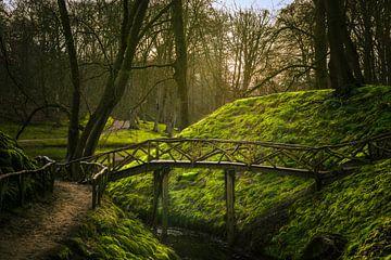 Sprookjes brug van Richard Nell