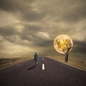 De weg van de tijd van Catherine Fortin