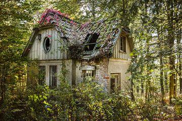 Hexenhaus im Wald von Jürgen Schmittdiel Photography