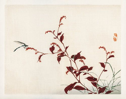 Libelle door Kōno Bairei