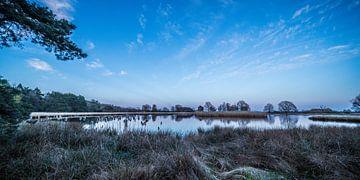 """Landschap """"Vroege ochtend op het Dwingelderveld"""" van Coen Weesjes"""