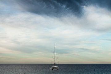 Catamaran op zee van Dennis Van Den Elzen