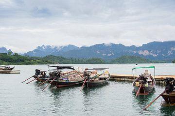 Khao Sok National park van