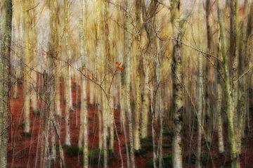 Der Wald der Geister, Francesco Martini von 1x