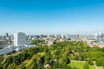 Rotterdam met de Erasmusbrug in panorama van Brian Morgan