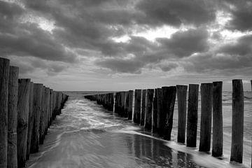 Küste von Zeeland von René Wolters
