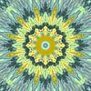 Mandala  Art 33 von Marion Tenbergen Miniaturansicht