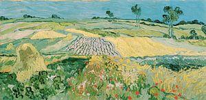 Die Ebene von Auvers - Vincent van Gogh