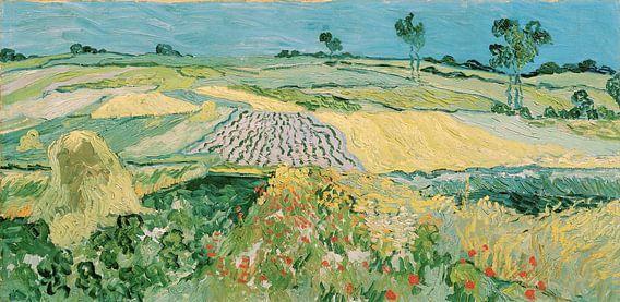 The Plain of Auvers - Vincent van Gogh van Meesterlijcke Meesters