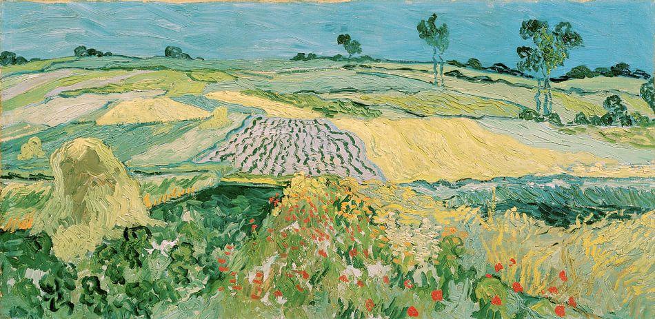 Die Ebene von Auvers - Vincent van Gogh von Meesterlijcke Meesters