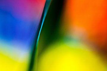 Kleur!01 van Simone Langeweg