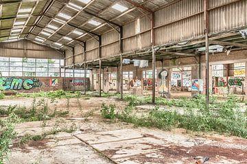 Verlassene Halle in Belgien von Elly Damen