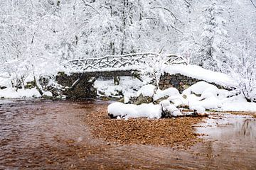 La Vallée de la Hoëgne (Hockai) van Etienne Hessels