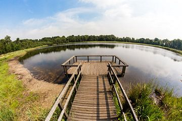 Rozenven op landgoed Visdonk in Roosendaal (Brabant) von Fotografie Jeronimo