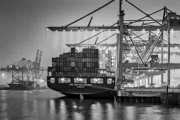 Hamburg, Haven, Elbe, Container van Ingo Boelter