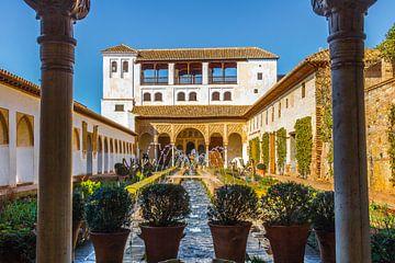 Fort Alhambra de Granada van Lizanne van Spanje