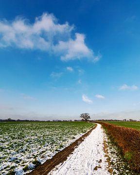 Landstraße mit Schnee