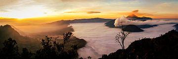 Panorama zonsopgang bij de berg Bromo op Java Indonesië van Dieter Walther