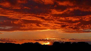 Himmlische Sonnenuntergang von Caroline Lichthart