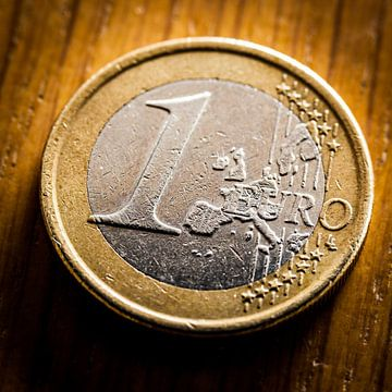 Euro munt van Victor van Dijk