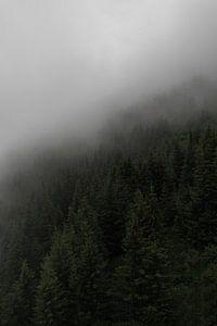 Scandinavische foto op een berg met dennenbomen, mist en bewolking van Moments by Kim