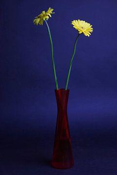Blumen in Vase von Wouter Kouwenberg