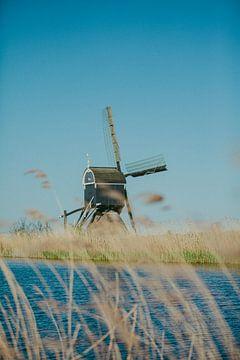 Niederländischer Stolz. Die Mühle von Sander Monster