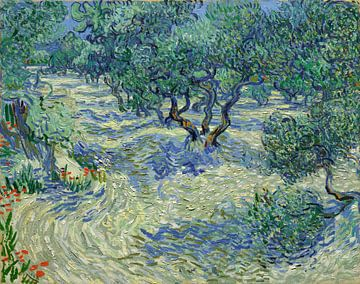 Olivenhain - Vincent van Gogh von 1000 Schilderijen